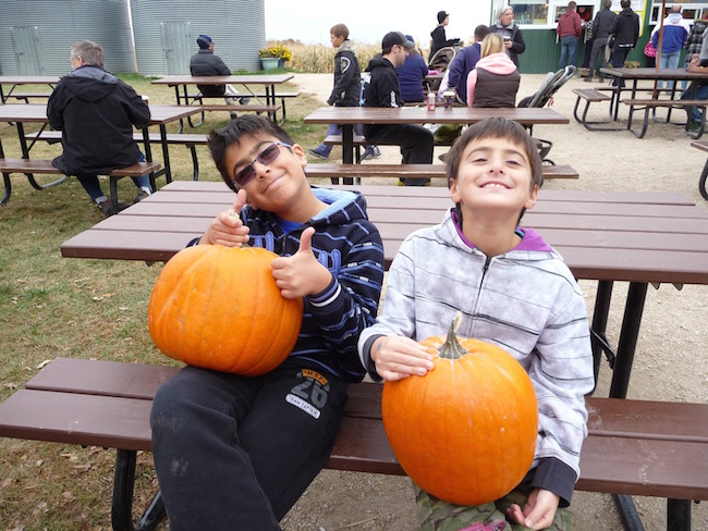 Pumpkin shopping 2013. Always picking their own pumpkins